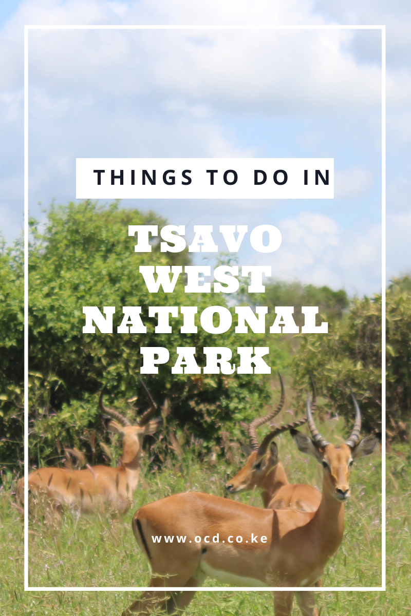 Things to do in Tsavo West National Park